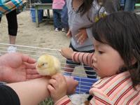 山口県防府市の幼稚園 玉祖幼稚園(たまのやようちえん)子育て支援 にこにこ元気っ子クラブ