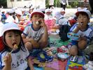山口県防府市の幼稚園 玉祖幼稚園(たまのやようちえん)年間行事 遠足